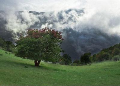 اکوماراتن جنگل ابر سال آینده در سطح بین الملل برگزار گردد