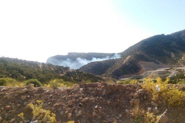 بخش هایی از مراتع و جنگل های ارغوان ایلام دچار حریق شد